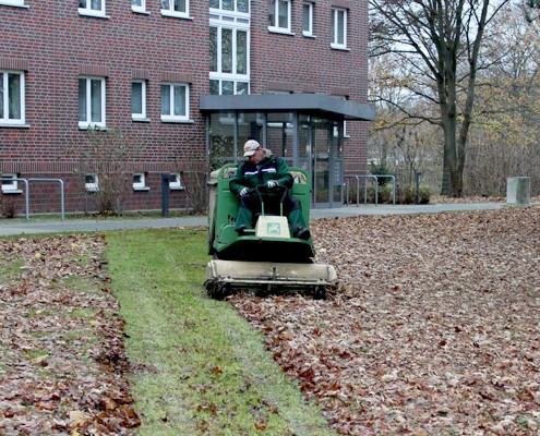 Meykopff Gartenbau Lübeck Rasenpflege Laubsammeln