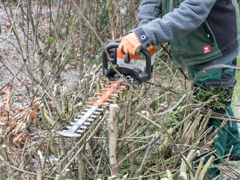 Meykopff Garten- Landschaftbau Baumschnitt Strauchschnitt professionelle Heckenschrer bei der Arbeit