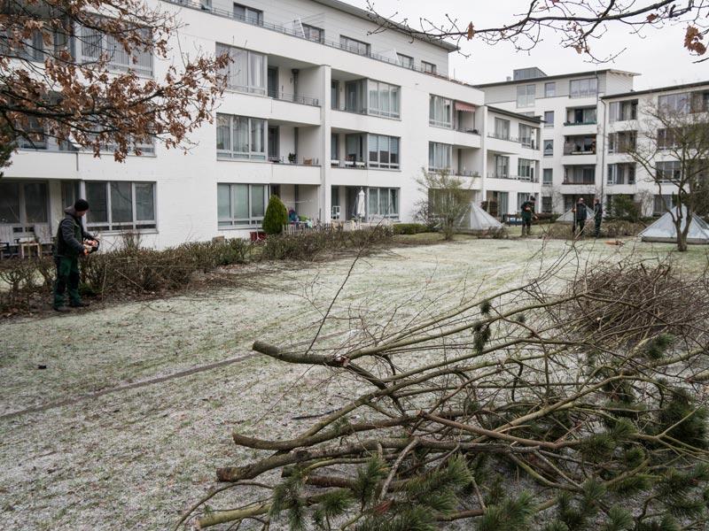 Meykopff Garten- Landschaftbau Baumschnitt Strauchschnitt Mitarbeiter beim Pflegen einer Wohnanlage