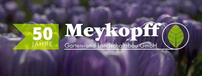 50 Jahre Meykopff