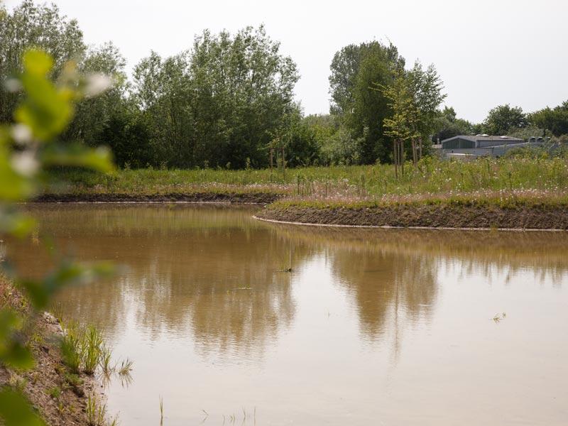 Meykopff Garten- und Landschaftsbau Drohnenflug Teich 2