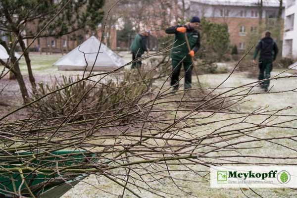 Meykopff Garten- Landschaftbau Baumschnitt Strauchschnitt Abschnitte