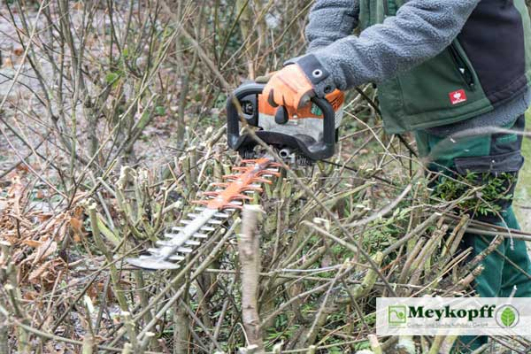 Meykopff Garten- Landschaftbau Baumschnitt Strauchschnitt Heckenschere