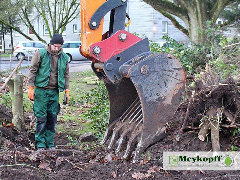 Meykopff GaLaBau Lübeck Baumfällarbeiten Baggerschaufel