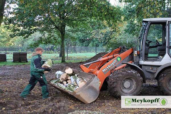 Meykopff GaLaBau Lübeck - Abfuhr von Baumstämmen