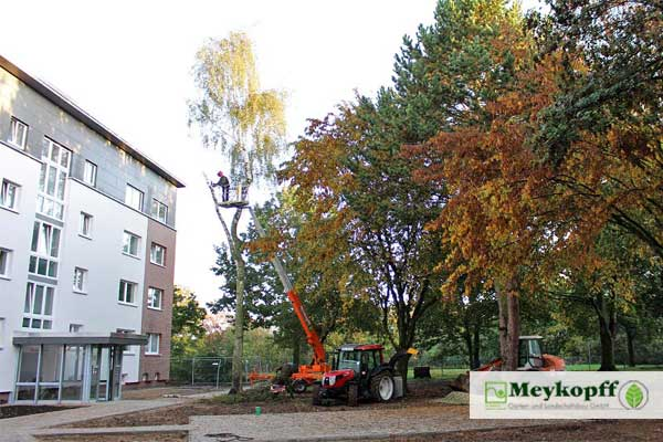 Meykopff GaLaBau Lübeck - in der Korvettenstrasse