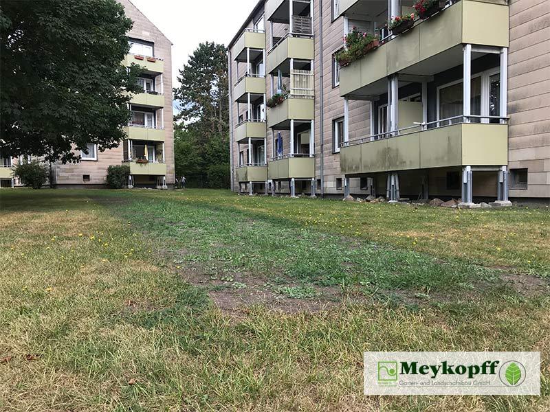 Meykopff Blumenwiesen in Wohnanlage Vorbereitung 1
