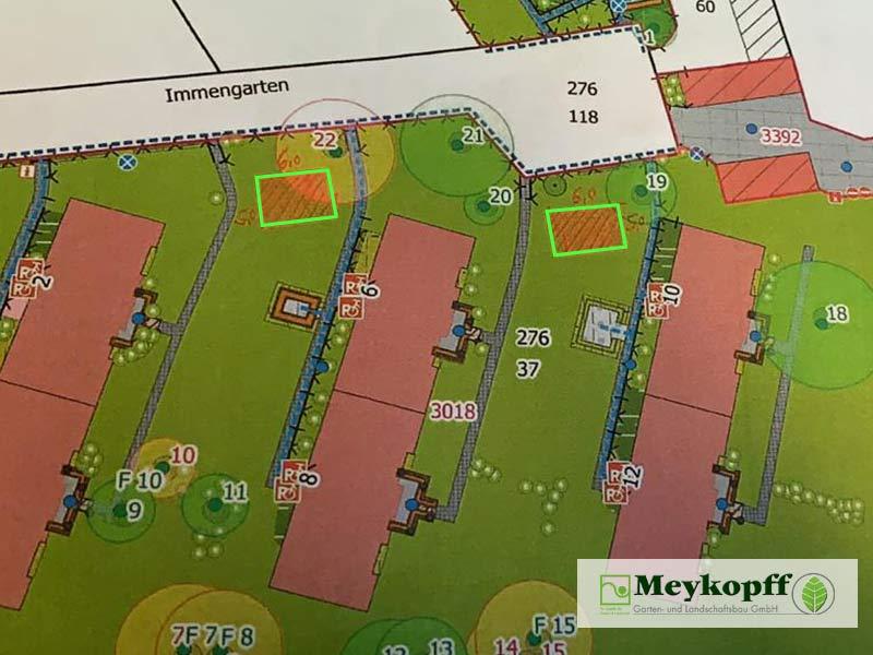 Meykopff Blumenwiesen in Wohnanlage Plan Immengarten Lübeck